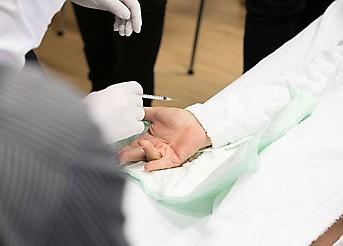 Hands on Hands Vienna